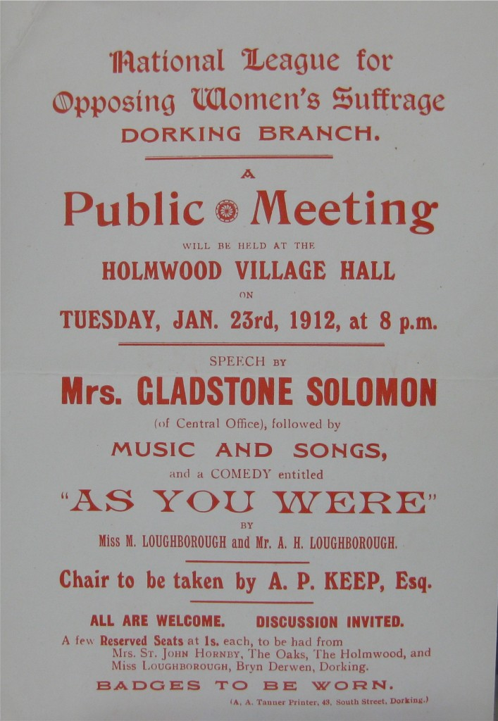 Poster for the National League for Opposing Women's Suffrage, Dorking branch.