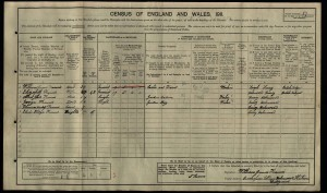 Albert John Francis 1911 Census © findmypast.co.uk