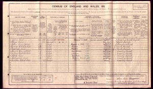 Nathaniel Rice 1911 Census © Ancestry.com