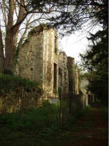 Ruins of Betchworth Castle 2013 © Mole Valley District Council