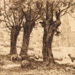 Charles Collins, North Holmwood, Dorking