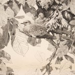 GE Collins, Bird in Chestnut Tree