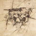 GE Collins, Chaffinch on Nest