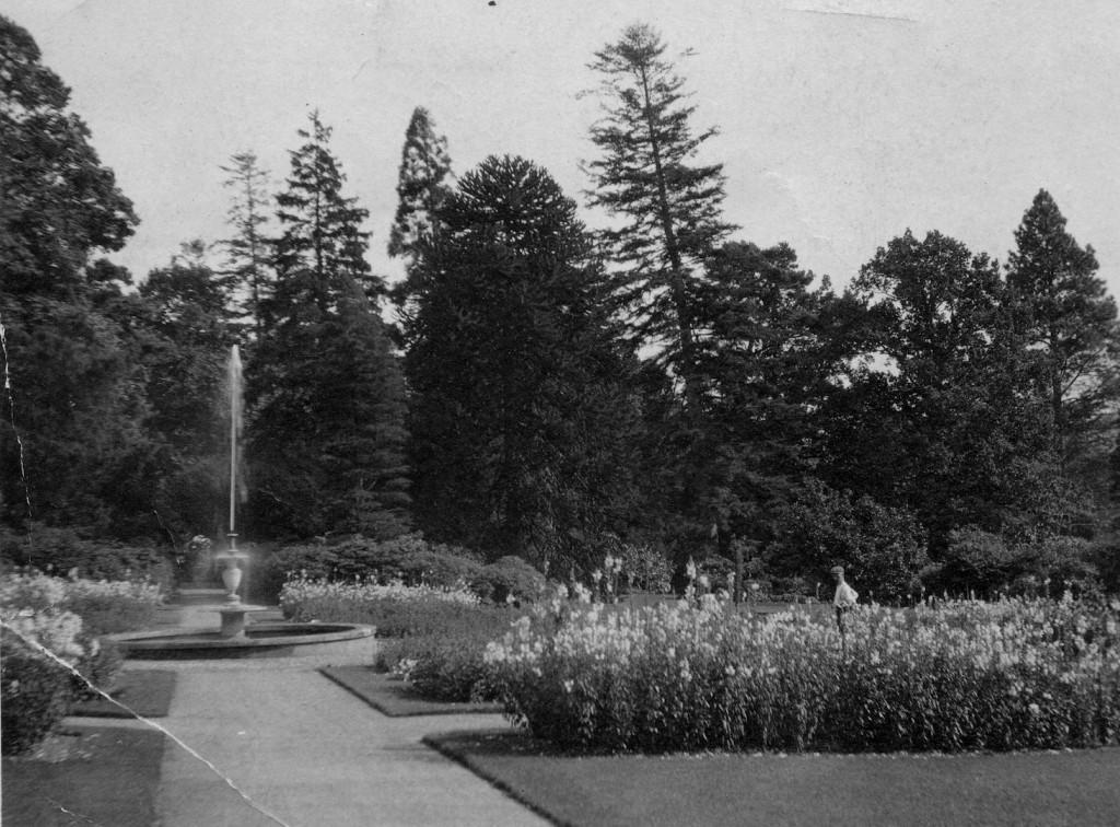 Bury Hill Gardens