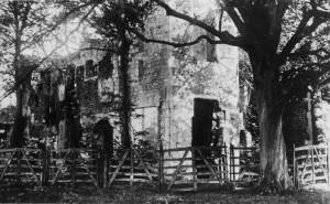 Betchworth Castle Ruin