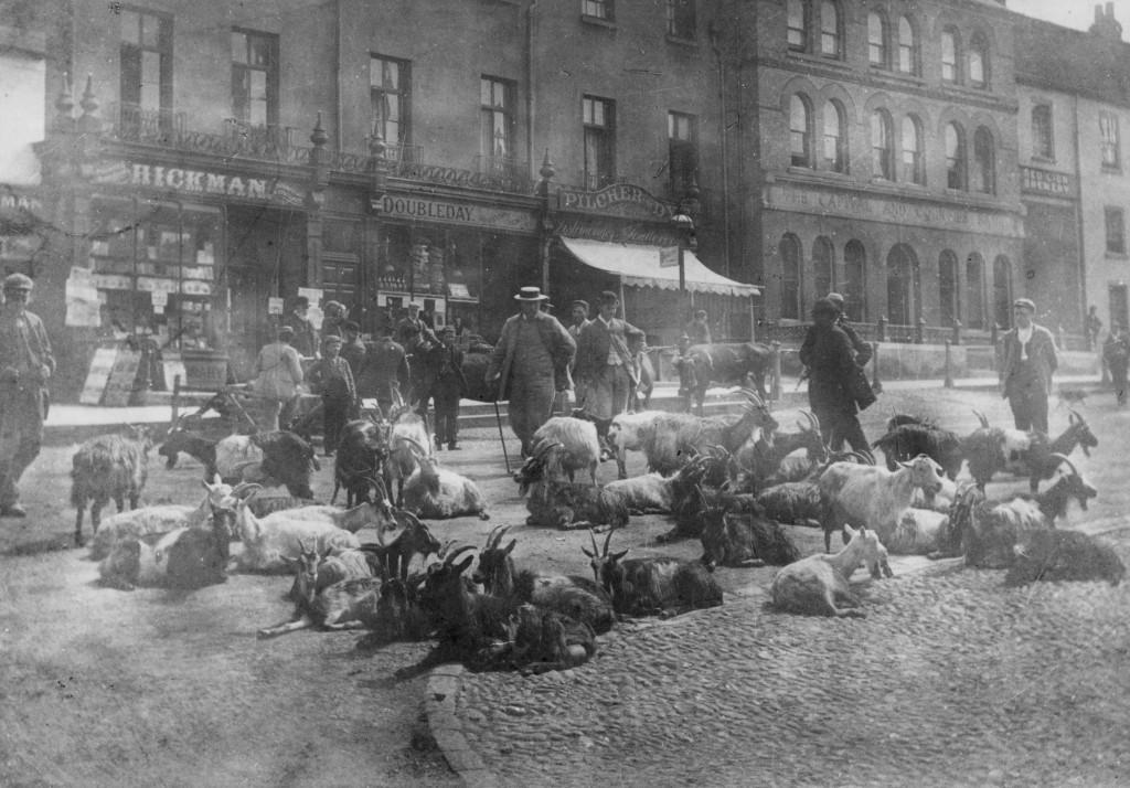 Dorking High Street, 1900