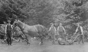 Mowing the lawn at Bury Hill, c1910 Image: Dorking Museum