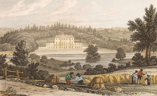 Bury Hill. JP Neale, 1829