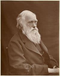 Charles Darwin 1884