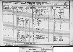 Allan Luff 1891 Census © findmypast.co.uk
