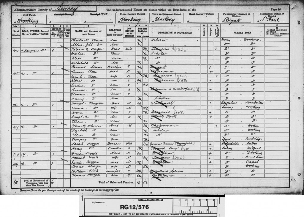 Charles William Mercer 1891 Census © findmypast.co.uk