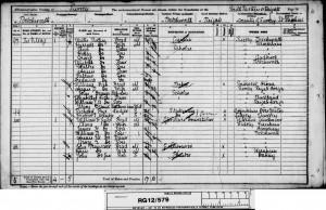 George Botting 1891 Census © findmypast.co.uk