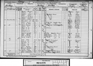 Henry Harman Young 1891 Census © findmypast.co.uk