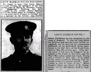 Henry Harman Young Wounded Notice Dorking Advertiser © findmypast.co.uk