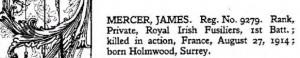 James Mercer Ireland Casualties of WW1 © Ancestry.co.uk