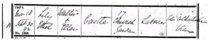 Lily Castle Birth Register 1892 © ancestry.co.uk