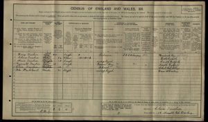 Reginald Truelove 1911 Census © findmypast.co.uk