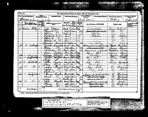 Robert Dodman 1881 Census © Ancestry.co.uk