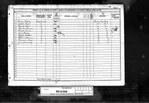 Thomas Steadman 1891 Census 2 ©Ancestry.co.uk