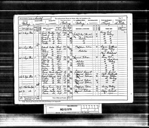 Walter Castle 1891 Census © Ancestry.co.uk