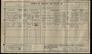 William Kippin 1911 Census © findmypast.co.uk